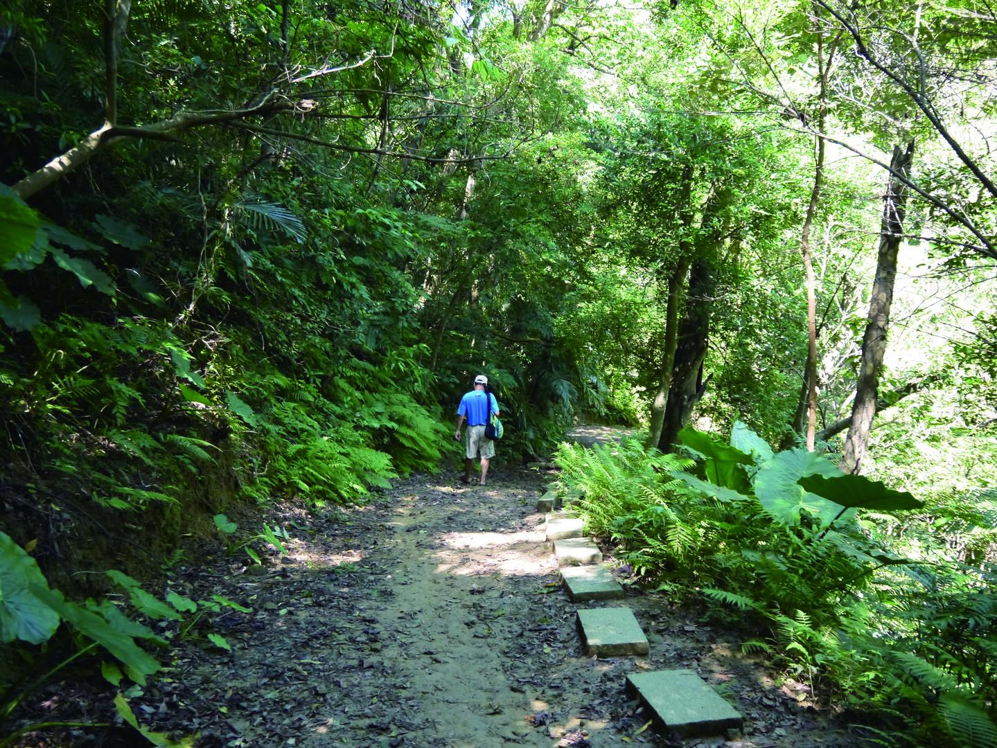 鳶山登山步道