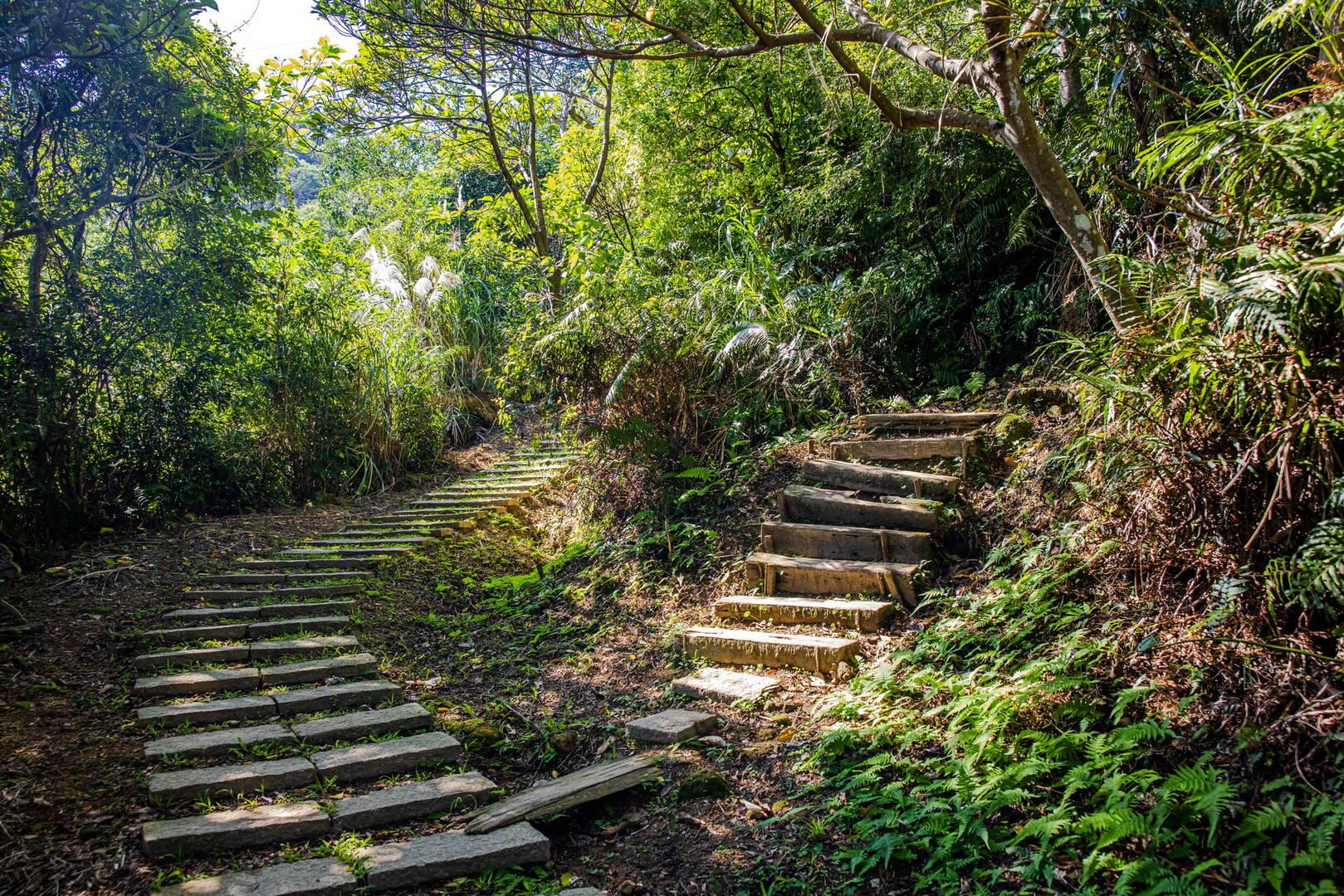 烘爐地登山步道